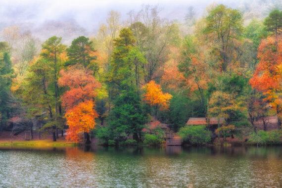 North Georgia – Autumn – 2020